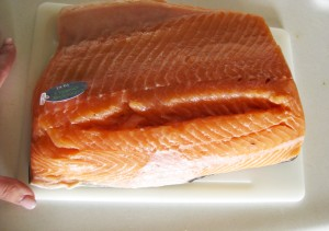 honking-piece-of-salmon