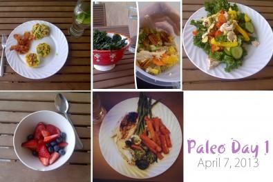 Paleo-Day-1