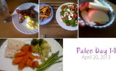 Paleo-Day-14