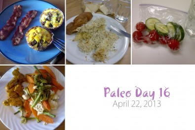 Paleo-day-16