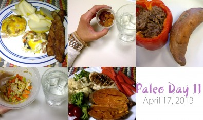 paleo-day-11