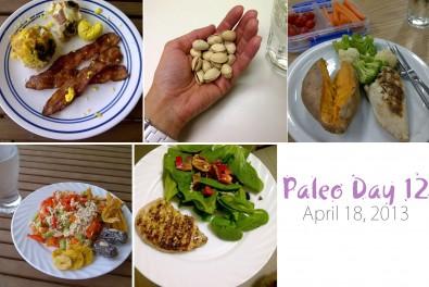 paleo-day-12