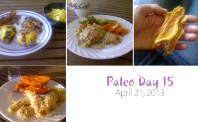 paleo-day-15