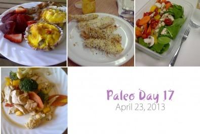 paleo-day-17