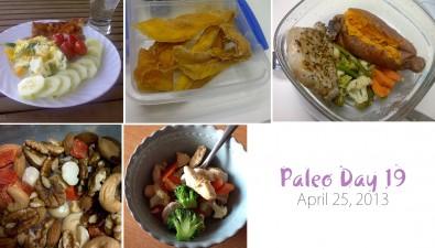 paleo-day-19