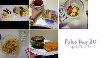 paleo-day-20