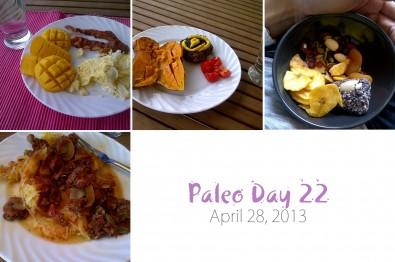 paleo-day-22