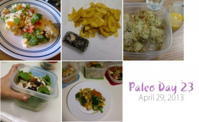 paleo-day-23