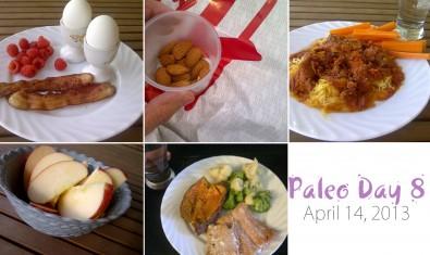paleo-day-8