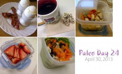 paleo-day-24