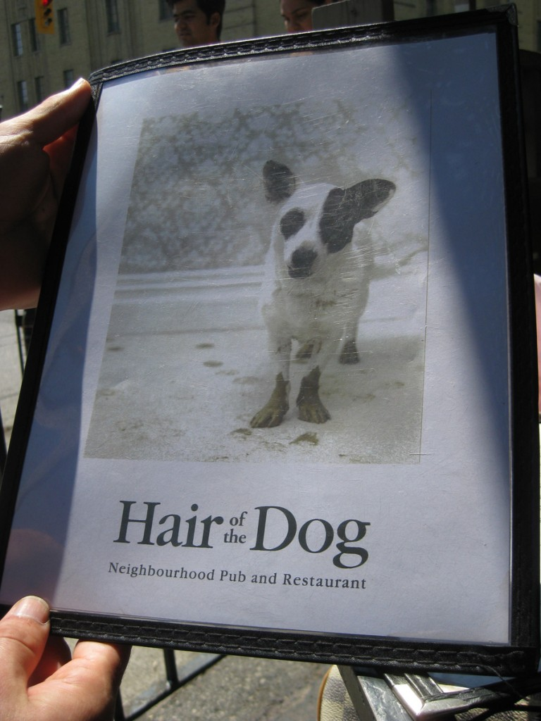 hair-of-the-dog