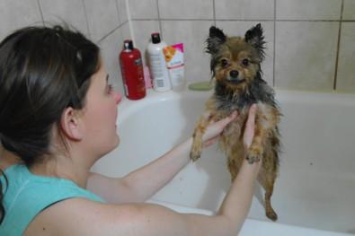 alfie-bath
