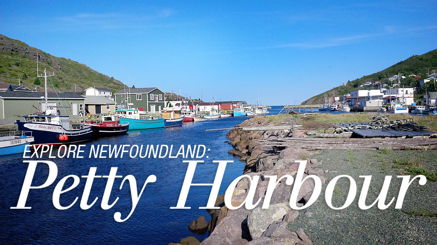 explore-petty-harbour