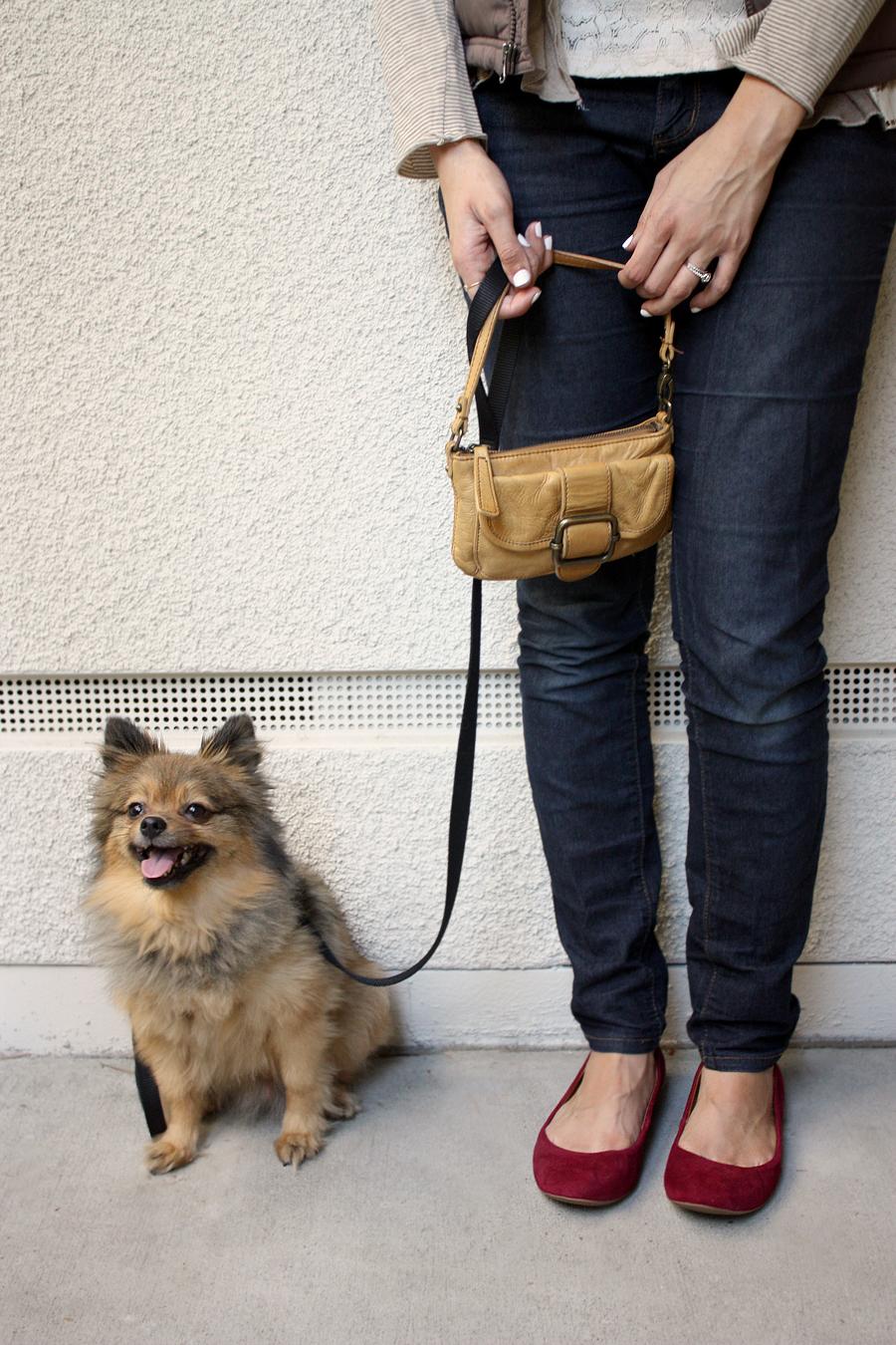 Alfie-and-my-legs