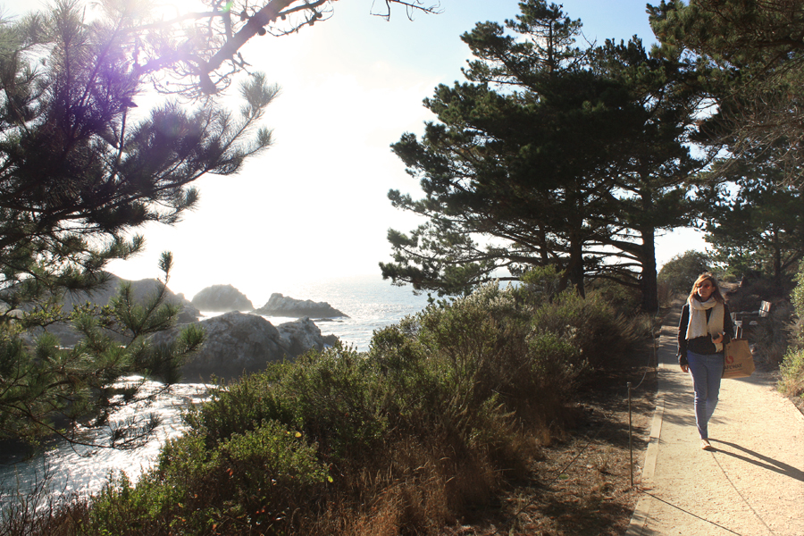 Picnic-at-Point-Lobos