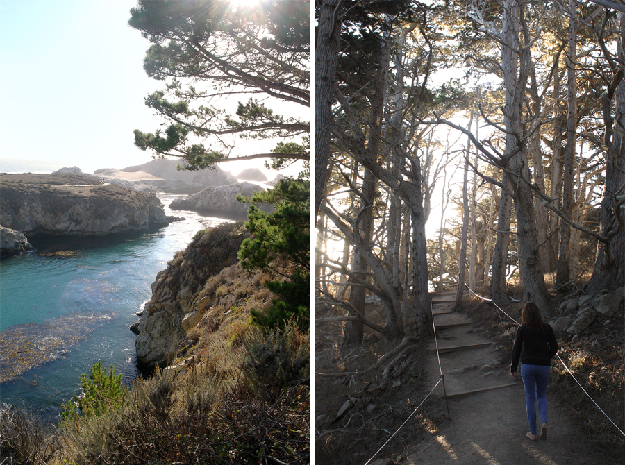 Point-Lobos-Honeymoon