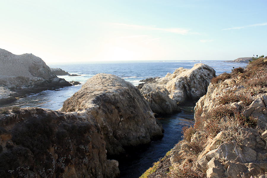 Rocks-of-Point-Lobos