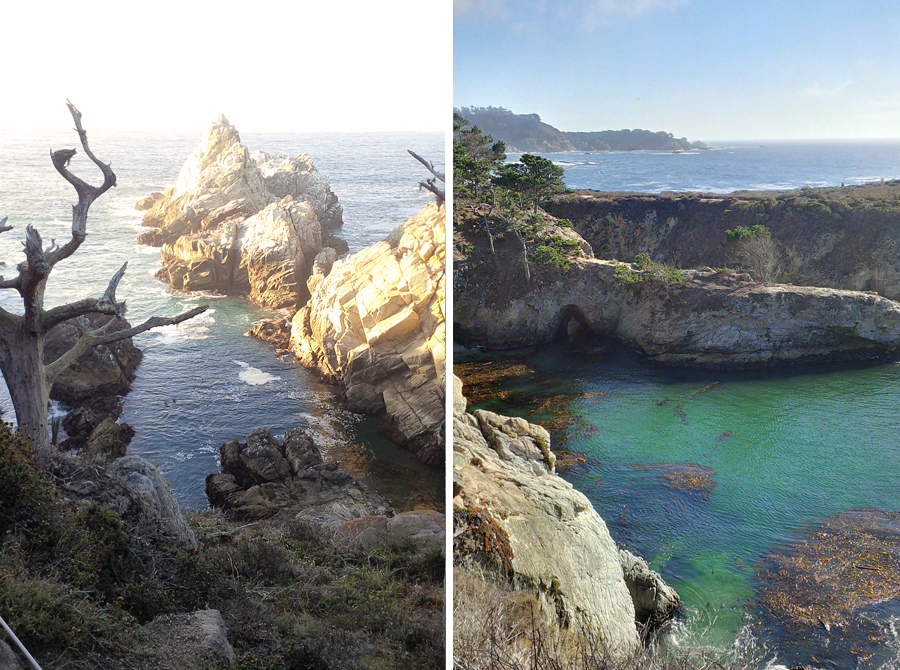 Views-of-Pt-Lobos