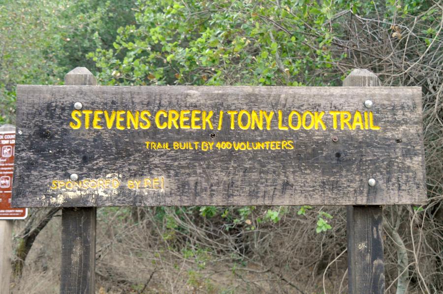 Tony-Look-Trail