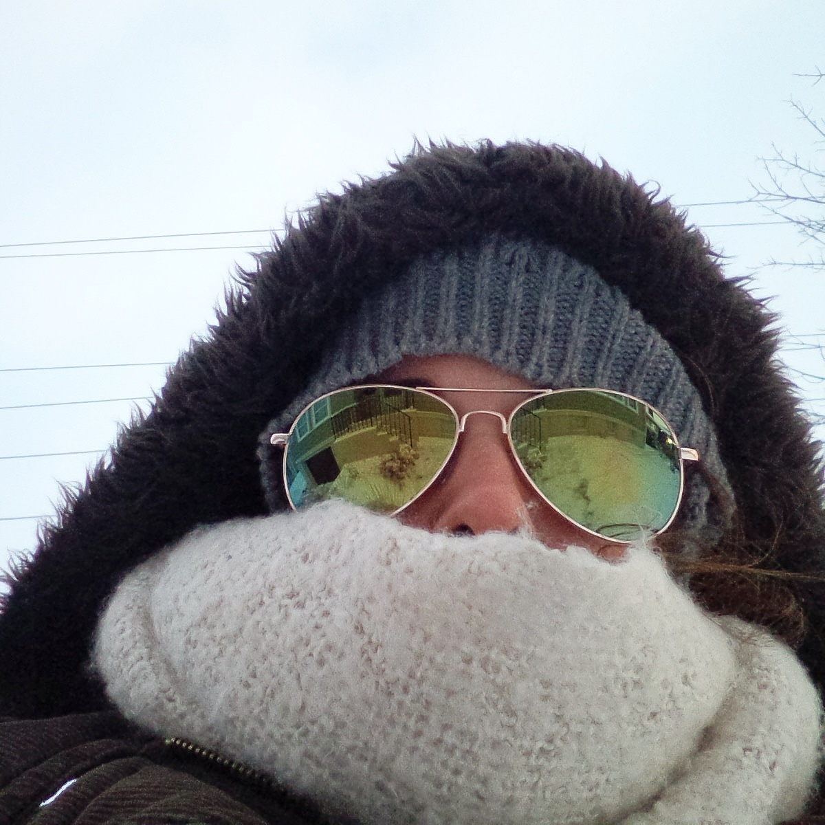 Newfoundland is cold