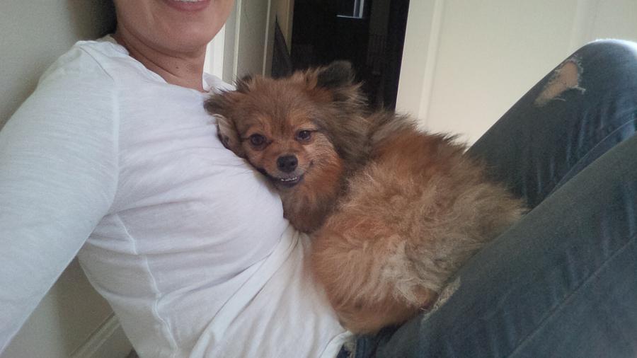Alfie-cuddles