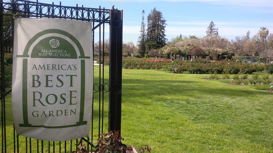 Americas-Best-Rose-Garden