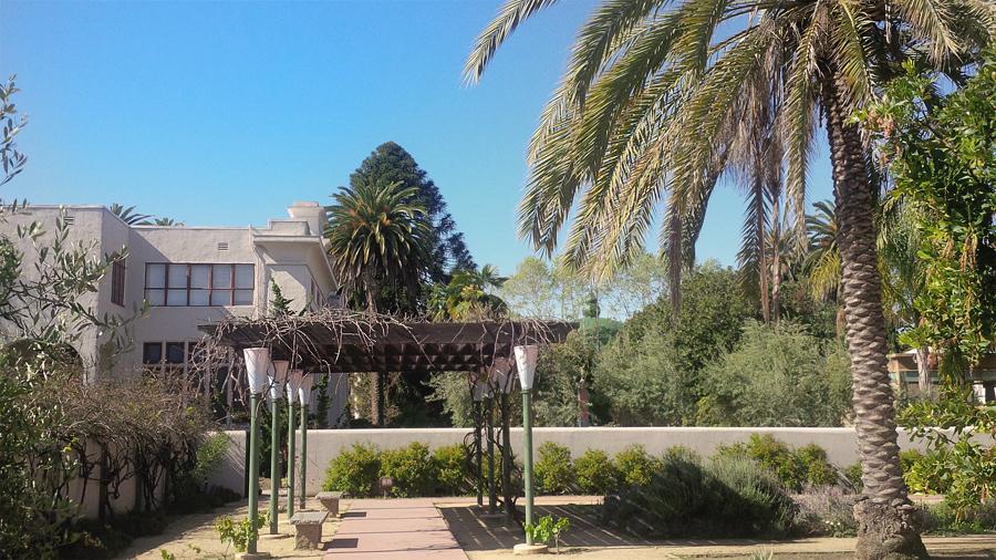 Ros-Peace-Garden