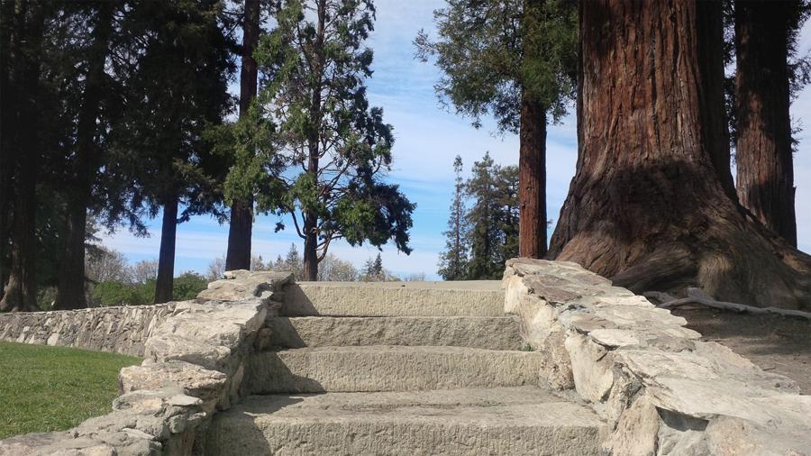 Stairs-in-Rose-Garden