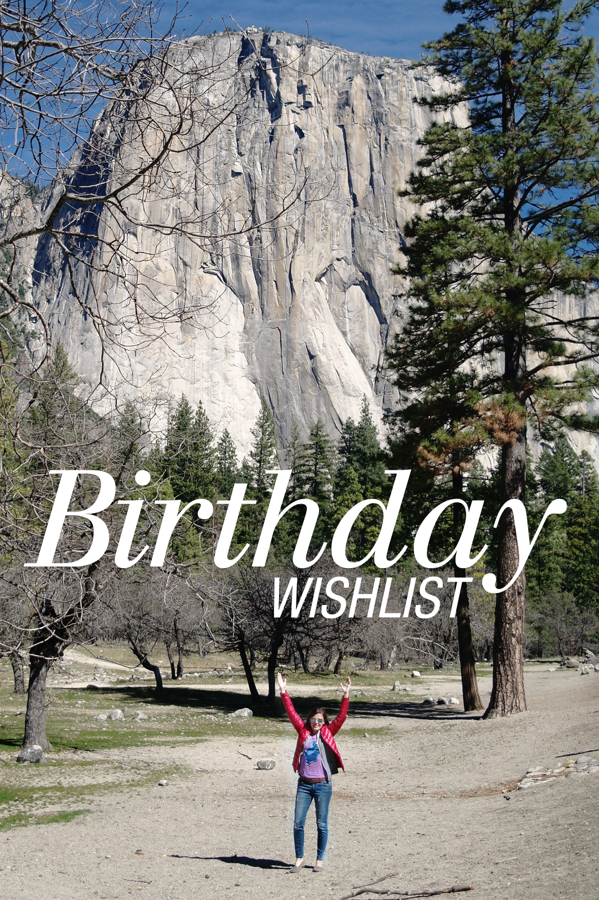 Birthday-Wishlist-2015