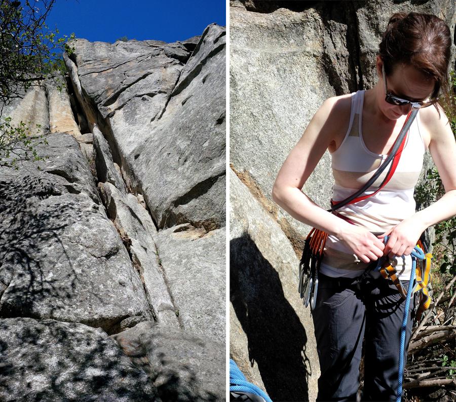 Loris-last-climb