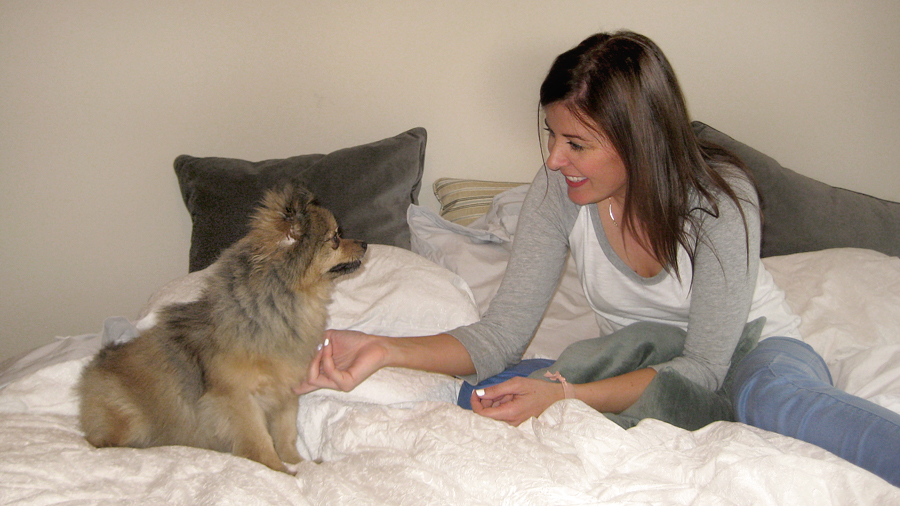 Petting-Alfie