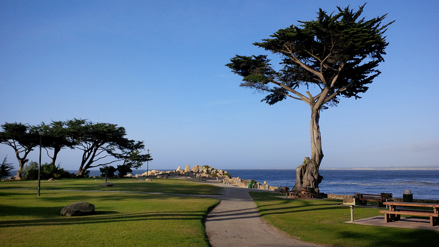Pacific-Grove