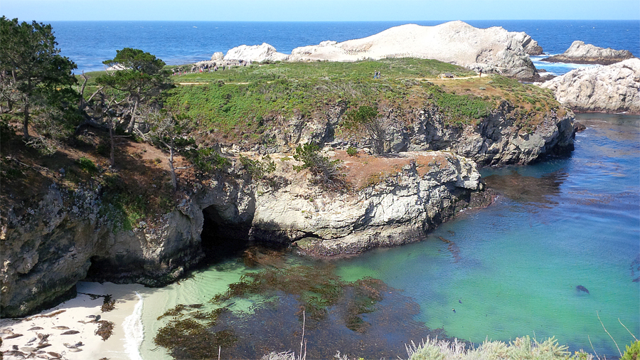 Point-Lobos-coves