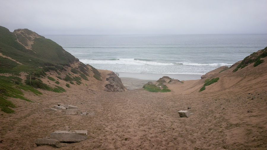 Fort-Funston-offleashDog-Be