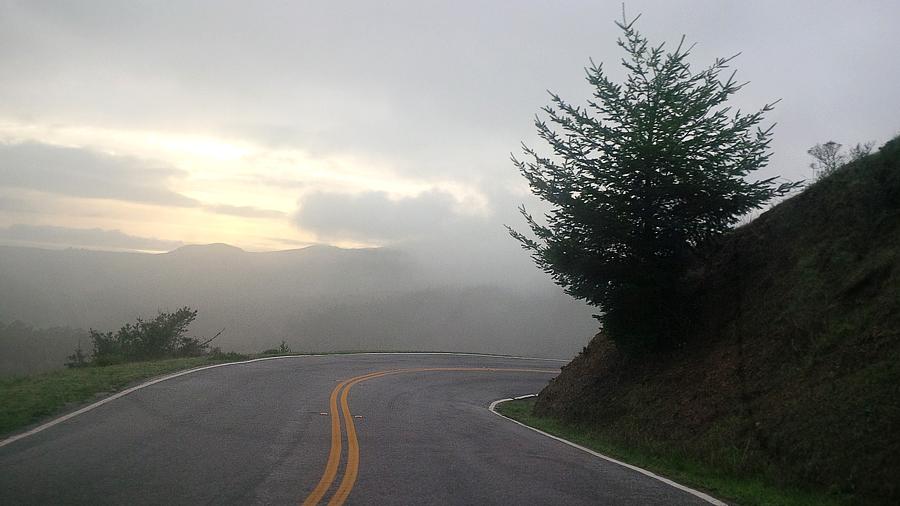 Foggy-drive
