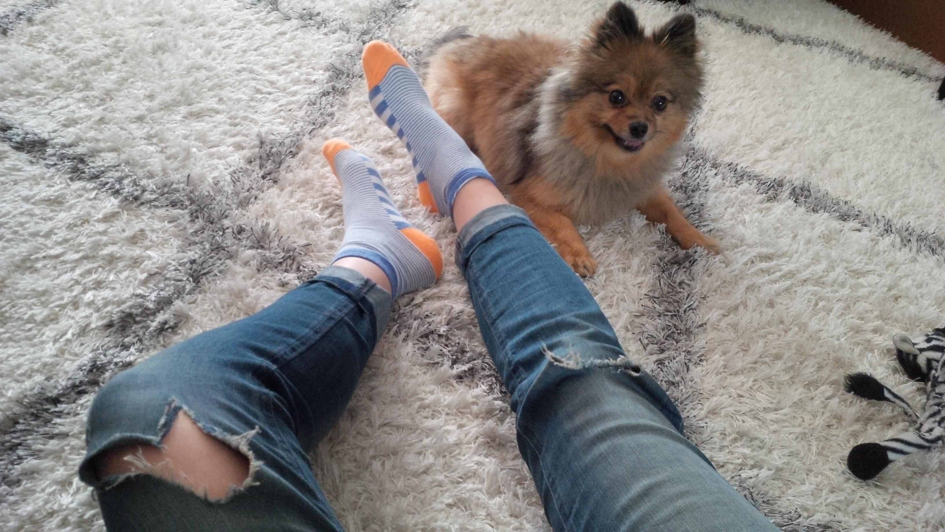 Fun socks on a fun rug