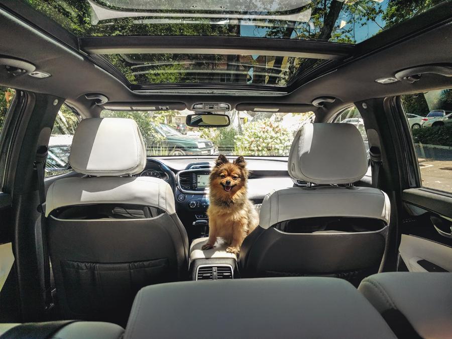 Kia-Sorento-trunk
