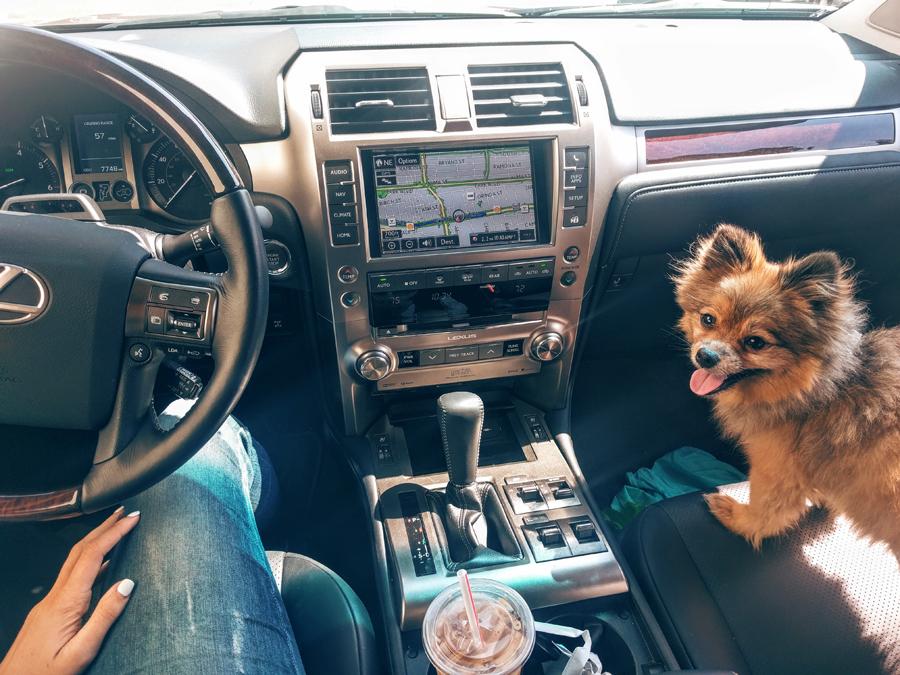 Inside-Lexus-GX460